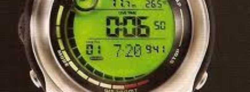 Review of the Immersion Prowler Dive Watch