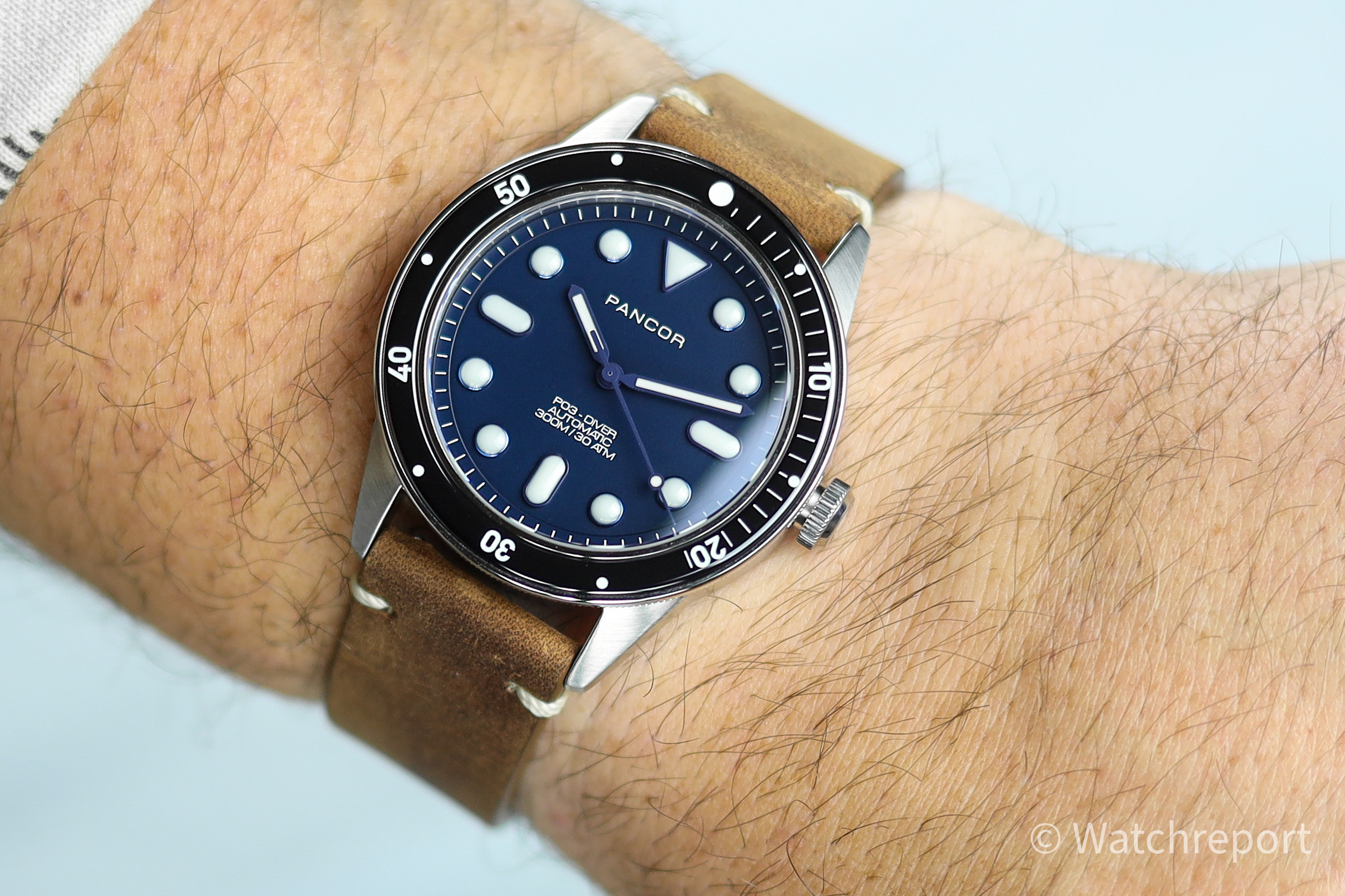 Pancor P03 Diver